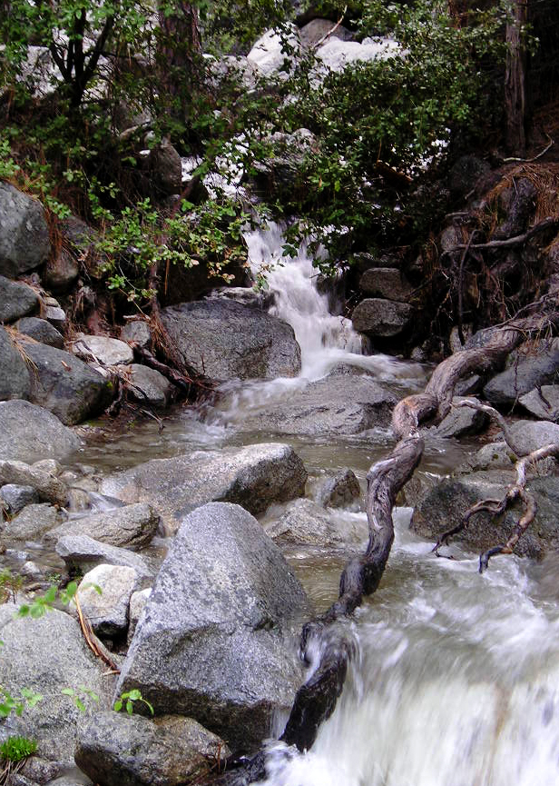 Yosemite-BubblingBrook.jpg