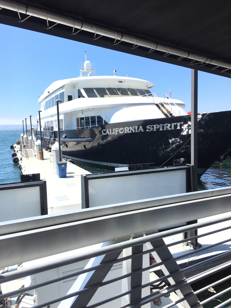San Diego Harbor Cruise by Flagship Cruises