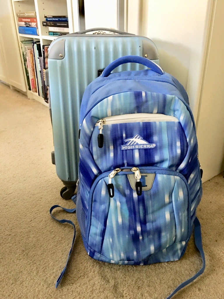 Carry-on sized hard body suitcase and lap-top backpack.