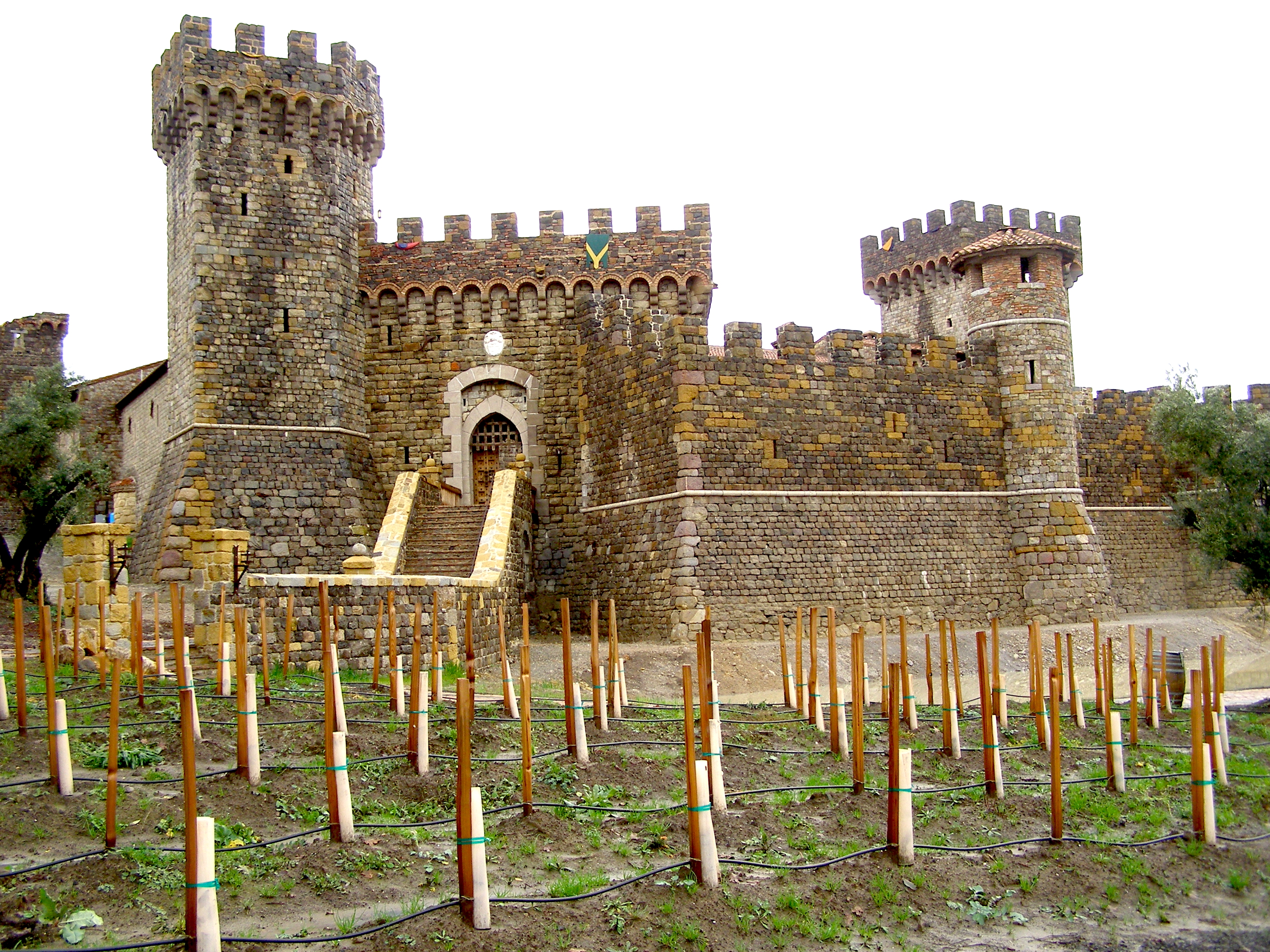 Castello-From-Vinyard.JPG