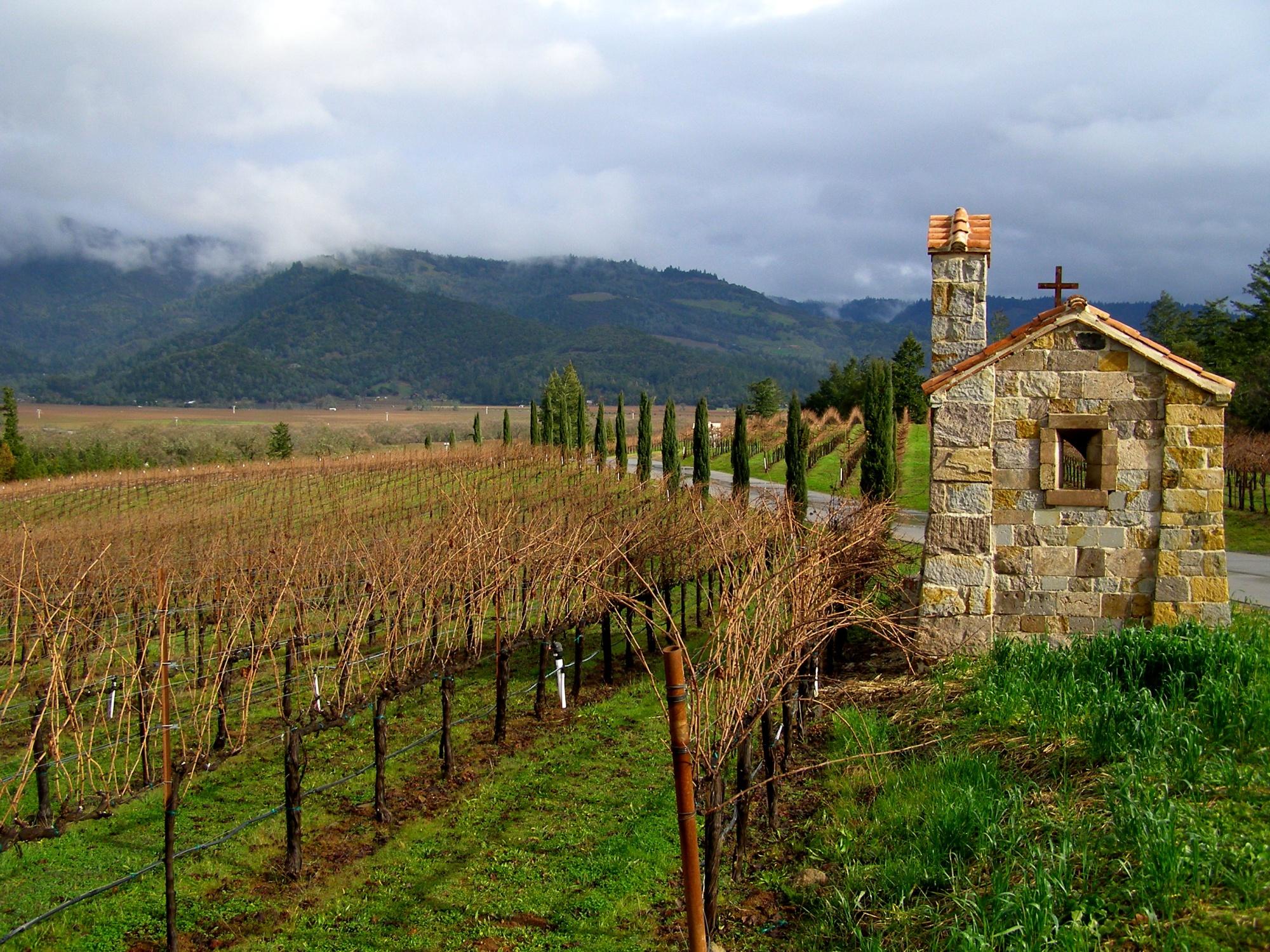 View of Napa Valley from the Gate House of Castello di Amorosa | Dawn Devine ~ davinadevine.me