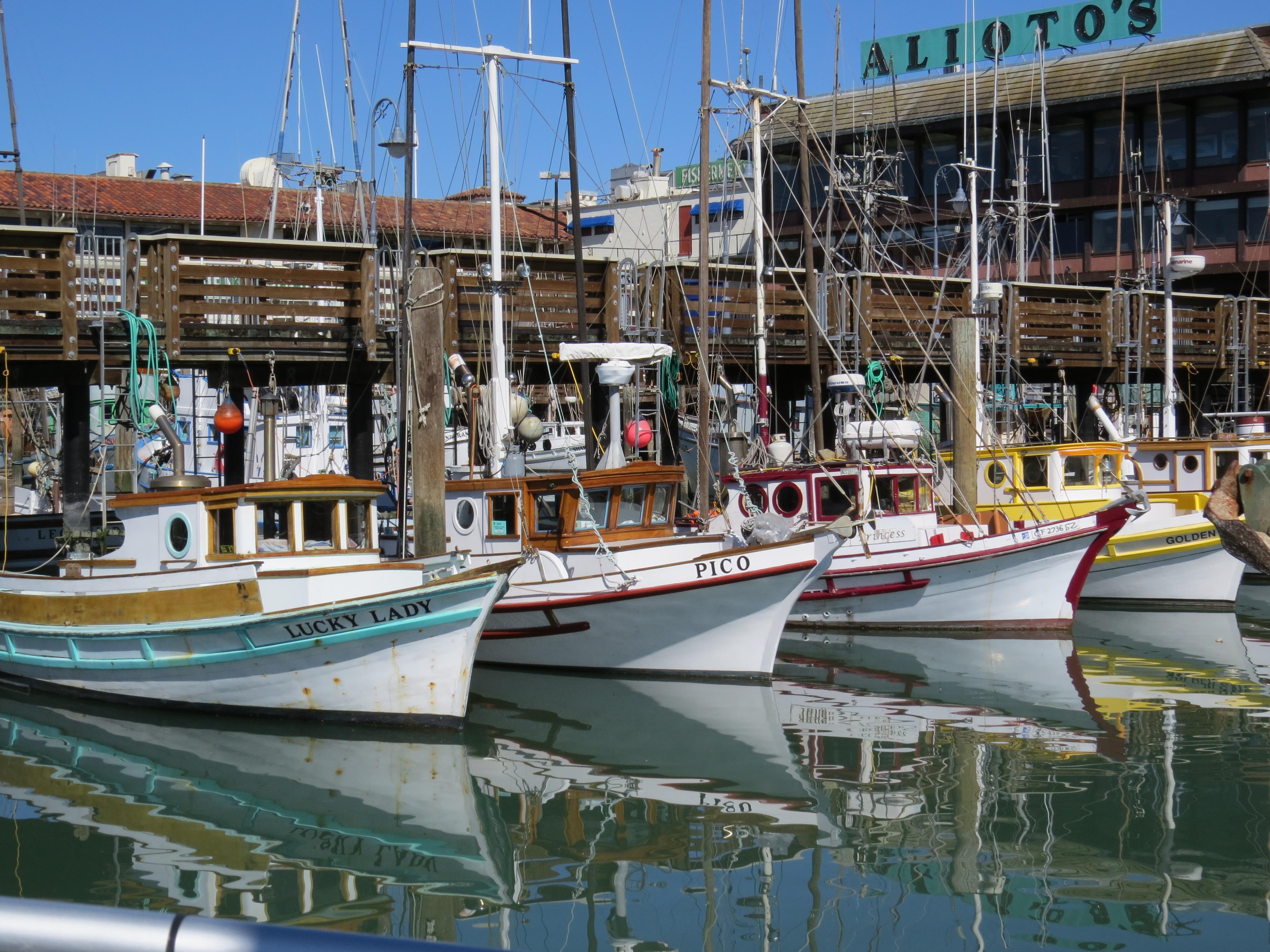 Boats moored at Fisherman's Wharf, San Francisco | Dawn Devine • Davina at Home and Abroad